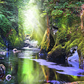 The Fairy Glen Gorge River Conwy by Mal Bray
