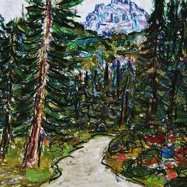 Giuseppe E Fassina - The Forests In Pian Delle Betulle
