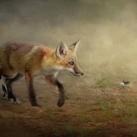 Jai Johnson - The Fox and The Butterfly