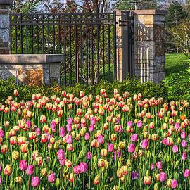 Robert Pearson - The garden enterance