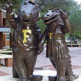 The Gators by D Hackett