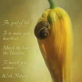 The Goal Of Life - Flower Art by Jordan Blackstone