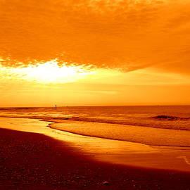 Arlane Crump - Upon The Golden Shore