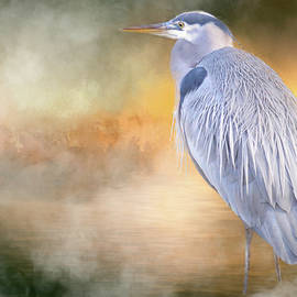 The Great Blue Heron by Jacqui Boonstra