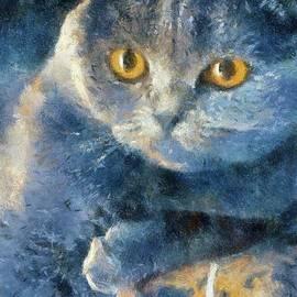 The Grumpy Cat by Sarah Kirk - Sarah Kirk
