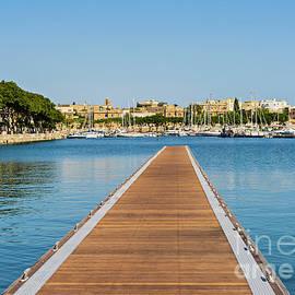 Kira Yan -  The gulf of Pieta in Malta