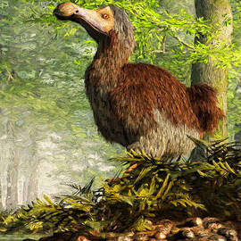 The Happy Dodo by Daniel Eskridge