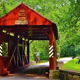 Eileen Brymer - The Henry Bridge