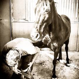 Wendy S Beatty - The Horse and the Farrier