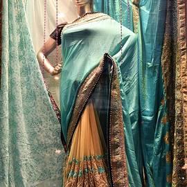 Kim Bemis - The Indian Sari