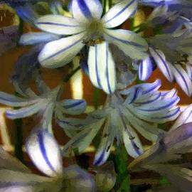 RC deWinter - The Intransigent Beauty of Blue