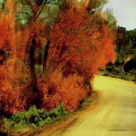 Lenore Senior - The Journey Home
