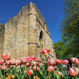 The Kings Tower at Knaresborough Castle