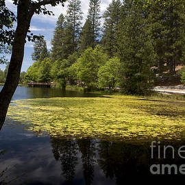 The Lake Fulmor by Ivete Basso Photography