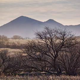Saija Lehtonen - The Las Guijas Mountains