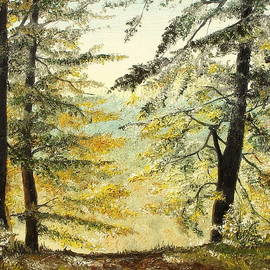 The Last Hill by Sorin Apostolescu