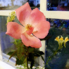 RC deWinter - The Last Rose of Summer