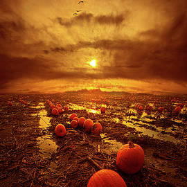Phil Koch - The Left Overs