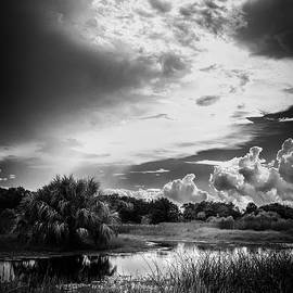 The Little Pond by Marvin Spates