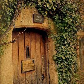 Toni Abdnour - The Little Vine House