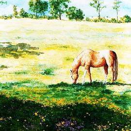 Hartmut Jager - The Lone Horse