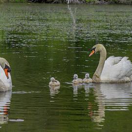 Linda Howes - The lovely Family