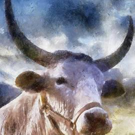 The Majestic Bull by Sarah Kirk - Sarah Kirk