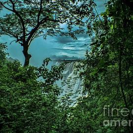 Karen Lewis - The Majestic Victoria Falls