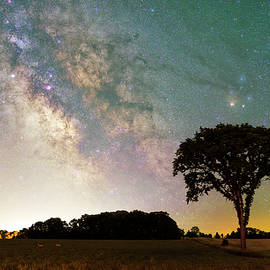 The Milky Way over Lone Elm Tree by Dustin Goodspeed
