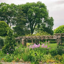 Jessica Jenney - The Monocot Garden