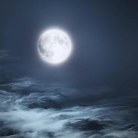 Bill Wakeley - The Moon Blues