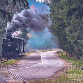 Claudia M Photography - The narrow gauge railway - Romania