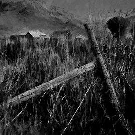 The Old Fence Post Dp by David King