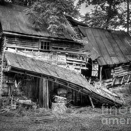 The Old Homestead by Douglas Stucky