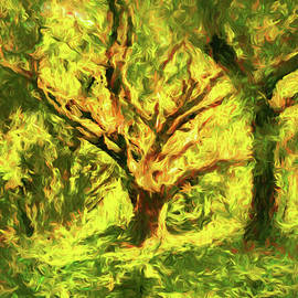 The Old Oak Tree by Isabella Howard