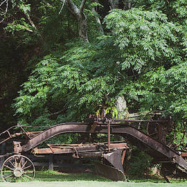 The Old Plow by Mary Ann Artz