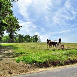 John Trommer - The Old Ways - Amish Farmer 1
