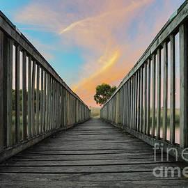 Naomi Burgess - The Old Wooden Bridge At Sunset