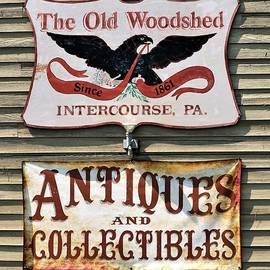 Diann Fisher - The Old Woodshed