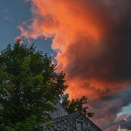 Scott Thorp - The Orange Dragon