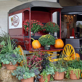 The Original Delivery Wagon by Carol Senske