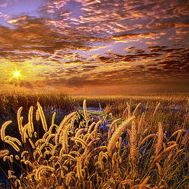 Phil Koch - The Outer Fringes