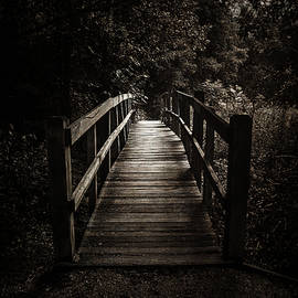 The Path Between Darkness and Light - Scott Norris