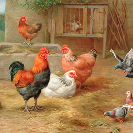 The pecking order - Edgar Hunt