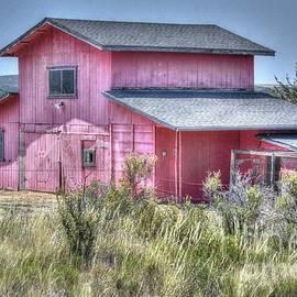 The Pink Barn by Thomas Todd