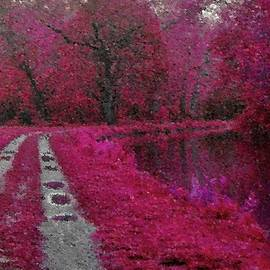 Val Arie - The Pink Path