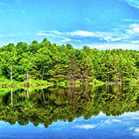 The Pond on Crane Brook Road by Gestalt Imagery
