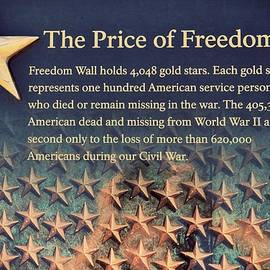 The Price Of Freedom by Marianna Mills