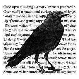 Sandra McGinley - The Raven Poem Art Print