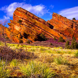 The Red Rock Park VI by David Patterson